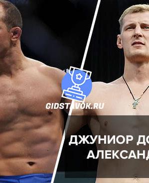 Прогноз Джуниор Дос Сантос - Александр Волков