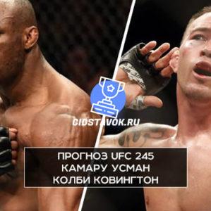 Прогноз Камару Усман - Колби Ковингтон UFC 245