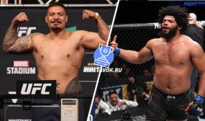 Прогноз Джастин Тафа - Хуан Адамс UFC 247