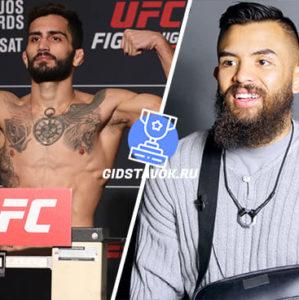Прогноз Габриэль Сильва - Кайлер Филлипс UFC FN 169