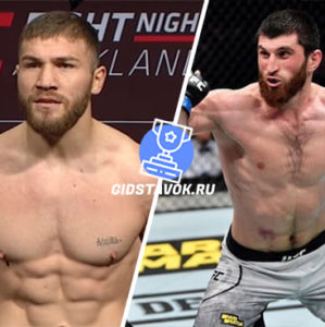 Прогноз Ион Куцелаба - Магомед Анкалаев UFC 249